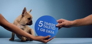 CBB Mobil 5 Timers Tale Hund